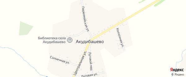 Центральная улица на карте села Акудибашево с номерами домов