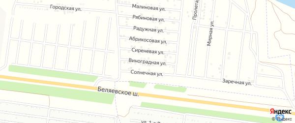 Виноградная улица на карте садового некоммерческого товарищества Зари с номерами домов