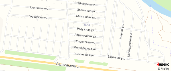 Абрикосовая улица на карте садового некоммерческого товарищества Зари с номерами домов