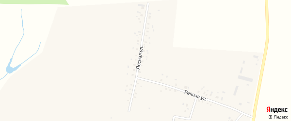Лесная улица на карте села Новые Тукмаклы с номерами домов