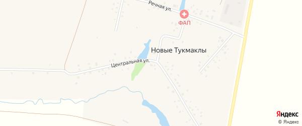 Центральная улица на карте села Новые Тукмаклы с номерами домов
