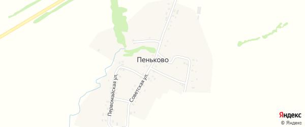 Заречная улица на карте села Пеньково с номерами домов