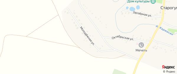Молодёжная улица на карте села Старогумерово с номерами домов