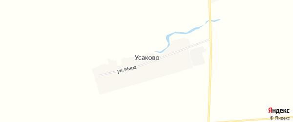 Карта деревни Усаково в Башкортостане с улицами и номерами домов
