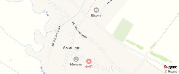 Центральная улица на карте села Аминево с номерами домов
