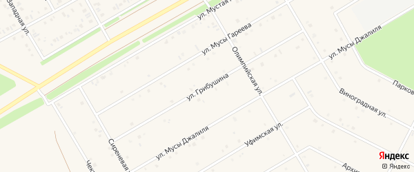 Улица Грибушина на карте села Кушнаренково с номерами домов