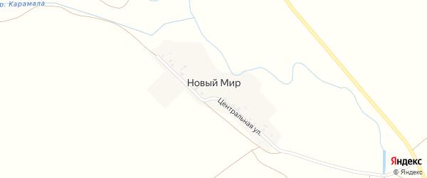 Центральная улица на карте деревни Нового Мира с номерами домов