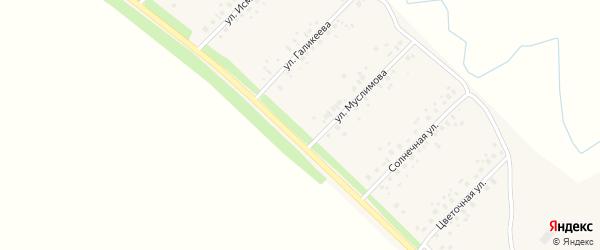 Березовая улица на карте села Еремеево с номерами домов