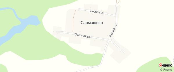 Озерная улица на карте деревни Сармашево с номерами домов