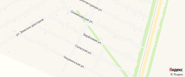 Березовая улица на карте села Кушнаренково с номерами домов