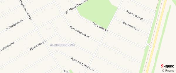 Виноградная улица на карте села Кушнаренково с номерами домов