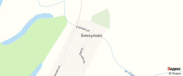 Центральная улица на карте деревни Биккулово с номерами домов