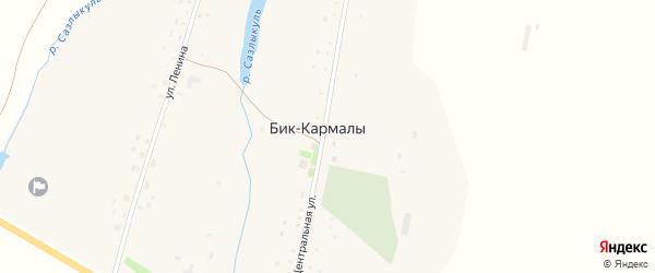 Центральная улица на карте села Бика-Кармалы с номерами домов
