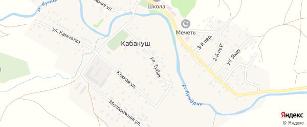 Улица Тубак на карте села Кабакуша с номерами домов