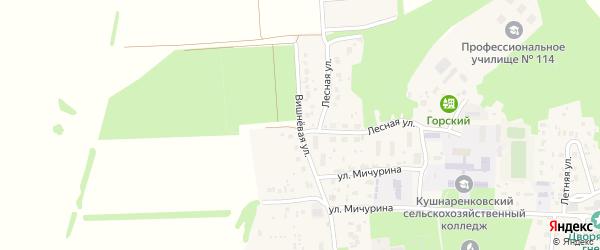 Вишневая улица на карте села Кушнаренково с номерами домов