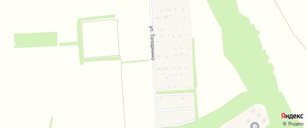 Улица Топорнино на карте села Кушнаренково с номерами домов