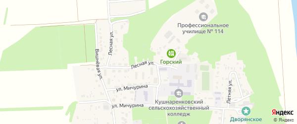 Лесная улица на карте села Кушнаренково с номерами домов