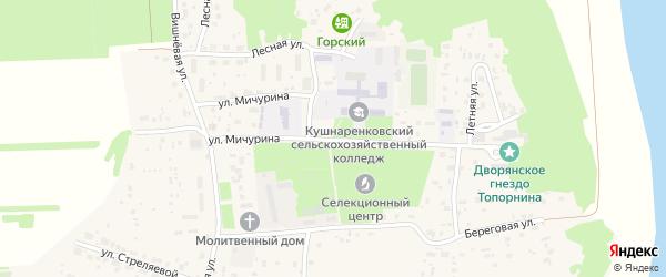 Улица Мичурина на карте села Кушнаренково с номерами домов