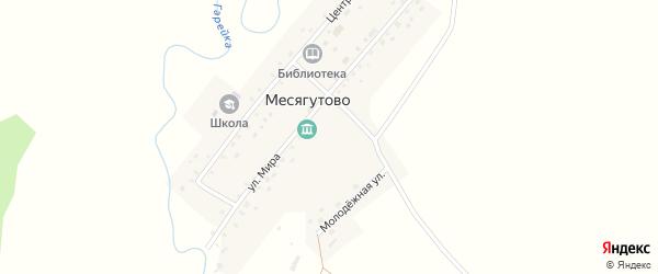 Улица Мира на карте села Месягутово с номерами домов