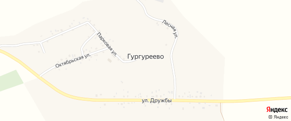 Парковая улица на карте деревни Гургуреево с номерами домов