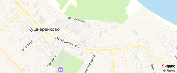 Библиотечный переулок на карте села Кушнаренково с номерами домов