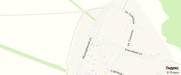 Молодежная улица на карте села Кусекеево с номерами домов
