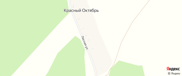 Лесная улица на карте деревни Красного Октября с номерами домов