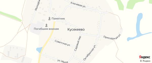 Улица Новостройки на карте села Кусекеево с номерами домов