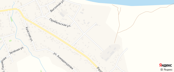 Раздольной 1-й переулок на карте села Кушнаренково с номерами домов