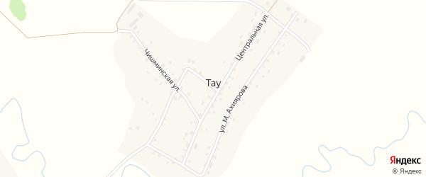 Чишминская улица на карте деревни Тау с номерами домов