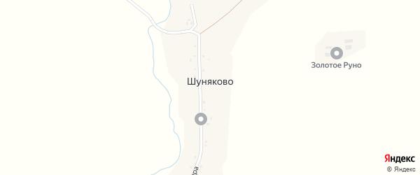 Улица Мира на карте деревни Шуняково с номерами домов