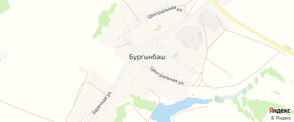 Заречная улица на карте деревни Бургынбаша с номерами домов