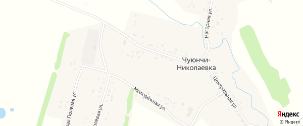 Вторая Полевая улица на карте села Чуюнчи-Николаевки с номерами домов