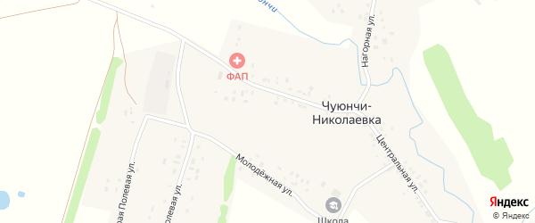 Нагорная улица на карте села Чуюнчи-Николаевки с номерами домов