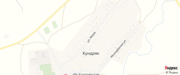 Улица Мира на карте села Кундряк с номерами домов