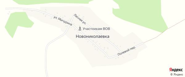Улица Мичурина на карте деревни Новониколаевки с номерами домов