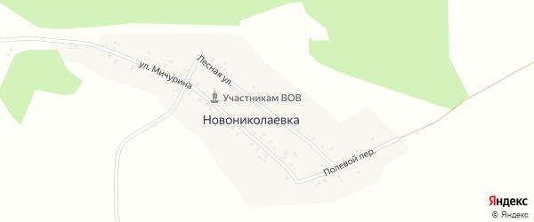 Лесная улица на карте деревни Новониколаевки с номерами домов