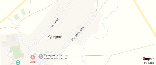 Молодежная улица на карте села Кундряк с номерами домов