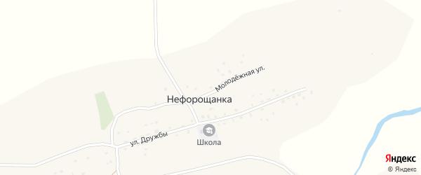 Улица Дружбы на карте села Нефорощанки с номерами домов
