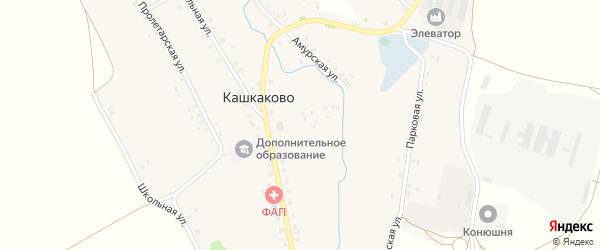 Амурская улица на карте деревни Кашкаково с номерами домов