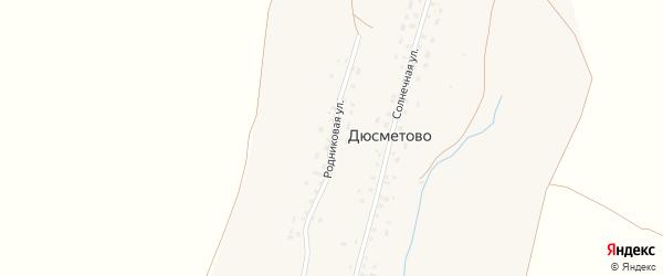Родниковая улица на карте деревни Дюсметово с номерами домов