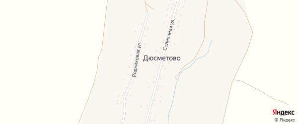 Ключевая улица на карте деревни Дюсметово с номерами домов