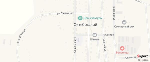 Совхозная улица на карте села Октябрьского с номерами домов