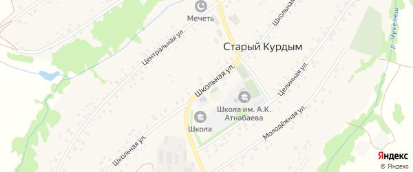 Школьная улица на карте села Старого Курдыма с номерами домов