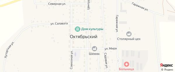 Центральная улица на карте села Октябрьского с номерами домов