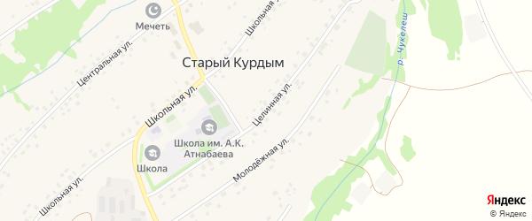 Целинная улица на карте села Старого Курдыма с номерами домов