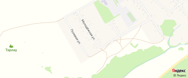 Молодежная улица на карте села Шулганово с номерами домов
