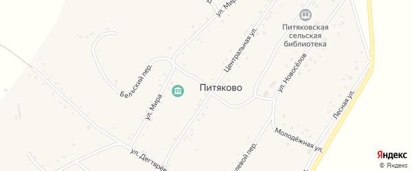 Улица Мира на карте села Питяково с номерами домов