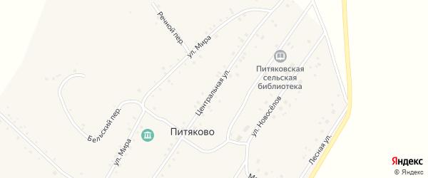 Центральная улица на карте села Питяково с номерами домов