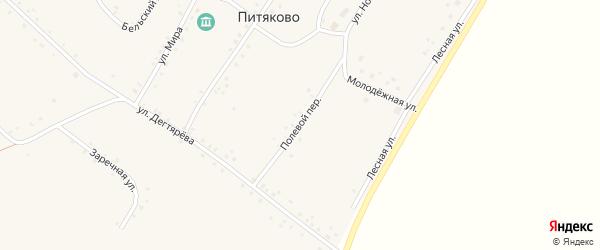 Полевой переулок на карте села Питяково с номерами домов